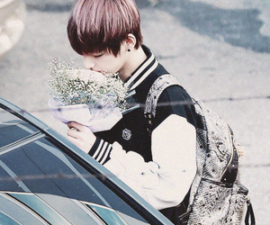 asian, flower, and suga image