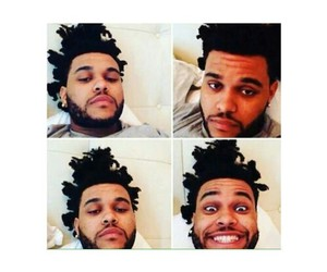 abel, xo, and the weeknd image
