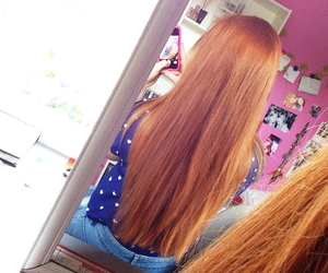 ginger, longhair, and redhair image
