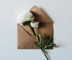 flowers, envelope, and Letter image