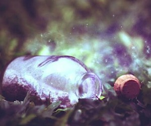magic, bottle, and grass image