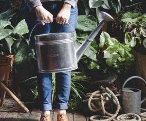 gardener, plants, and gardening image