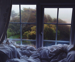 bed, window, and forest image