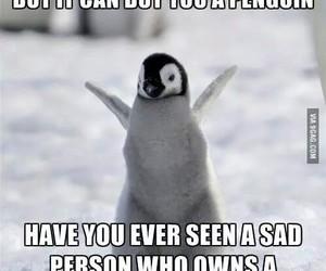 penguin, money, and happy image