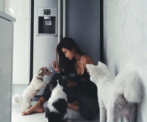 dogs and girl image