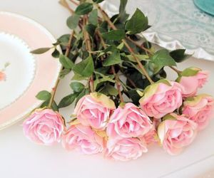 rose and cute image