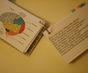 class, study, and notes image