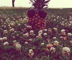 flowers, pineapple, and sunglasses image