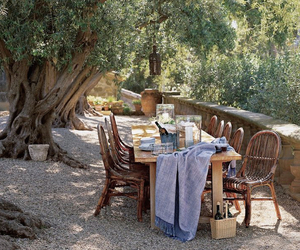 al fresco, dining, and olive trees image
