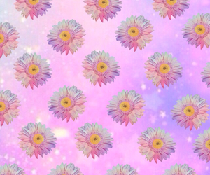 background, flower, and pink image