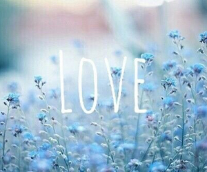 pretty, spring, and love image