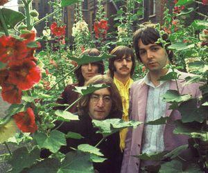 beatles, flowers, and indie image