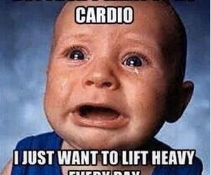 cardio, lifting, and bodybuilding image