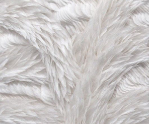 white and fur image