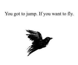 bird, fly, and jump image