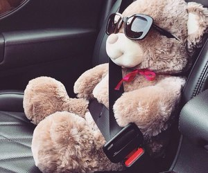 bear, teddy bear, and car image