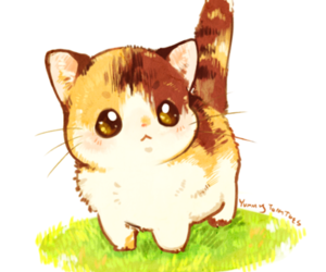 cat, cute, and kawaii image