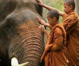 Buddha, happiness, and nature image