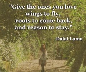 quote, love, and fly image