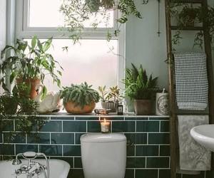 decor, tropical, and ev image