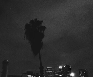 california, palm tree, and cloudy image