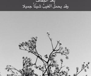 arabic, black, and bw image