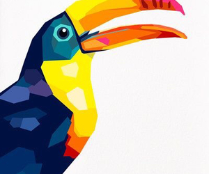background, tucan, and wallpaper image