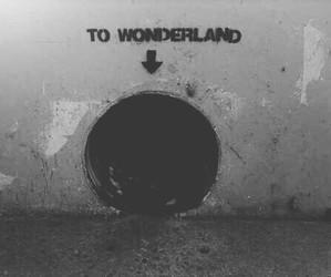wonderland, grunge, and black and white image