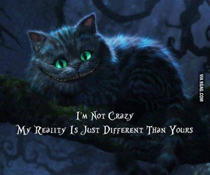 alice in wonderland, cat, and quote image