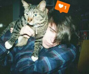 boy, cat, and drunk image