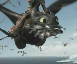 dragon, fly, and fish image