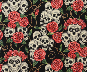 wallpaper, background, and skull image