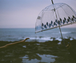 umbrella, sea, and photography image