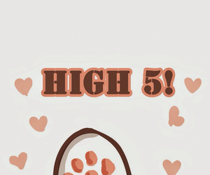 cat, heat, and high 5 image