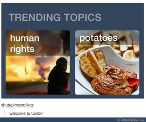 funny, human rights, and lol image