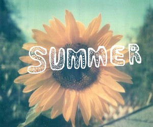 summer, flowers, and sunflower image