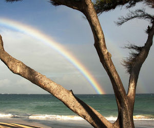 beach, ocean, and rainbow image