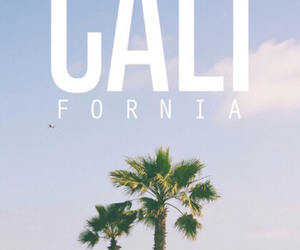 california, wallpaper, and beach image