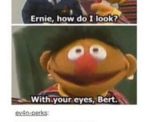 bert, bert and ernie, and ernie image