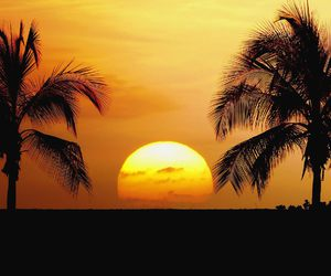 dawn, sunset, and summer paradise image
