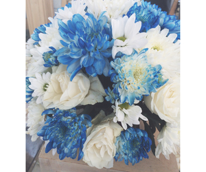 blue, bouquet, and cool image