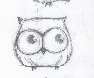 cute, owl, and drawing image