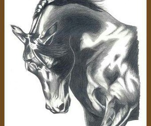 beautiful, black-white, and drawing image