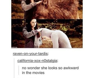 funny and twilight image