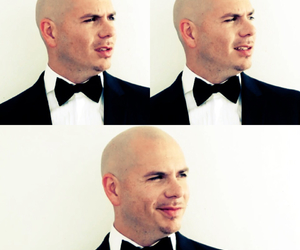 Collage, pitbull, and singer image