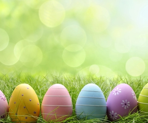 easter, easter eggs, and eggs image