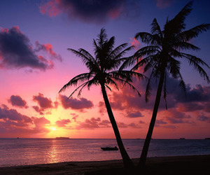 sunset, beach, and sea image