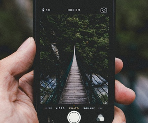 iphone, nature, and bridge image