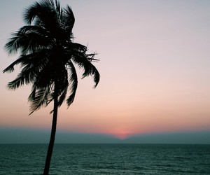 beach, Dream, and goa image