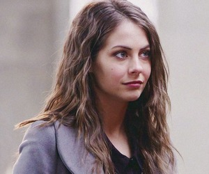 arrow, willa holland, and thea queen image